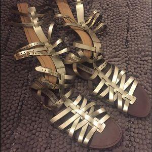 Steve Madden Sparta gladiator sandal